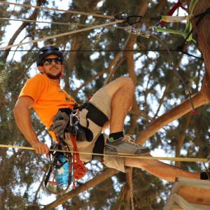 אורי רתום לחבל תלוי על עץ